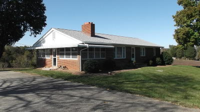 Bedford County Single Family Home For Sale: 1725 Dundee Rd