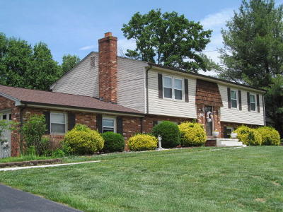 Botetourt County Single Family Home For Sale: 197 Knollwood Dr