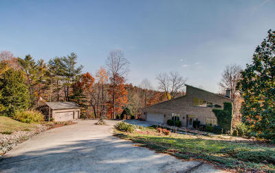 Single Family Home For Sale: 2020 Altice Mill Rd
