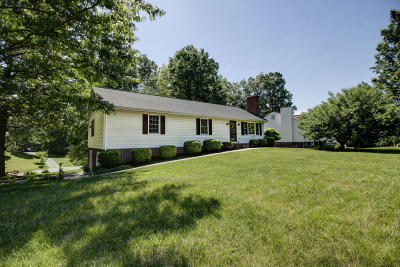 Botetourt County Single Family Home For Sale: 165 Fox Fire