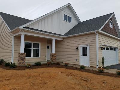 Moneta Single Family Home For Sale: 80 Carriage Homes Dr