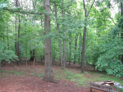 Hardy VA Residential Lots & Land For Sale: $35,500