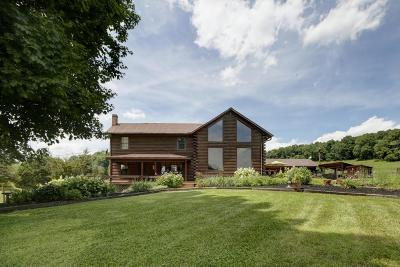 Botetourt County, Roanoke County Single Family Home For Sale: 183 Connect Rd