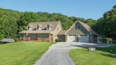 Bedford County Single Family Home For Sale: 12891 Dickerson Mill Rd