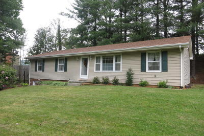 Botetourt County Single Family Home For Sale: 59 Silverbirch Dr