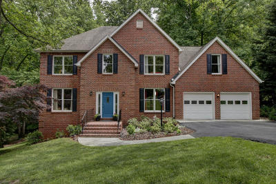Roanoke County Single Family Home For Sale: 471 Downing St