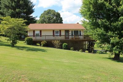 Botetourt County Single Family Home For Sale: 438 3rd St