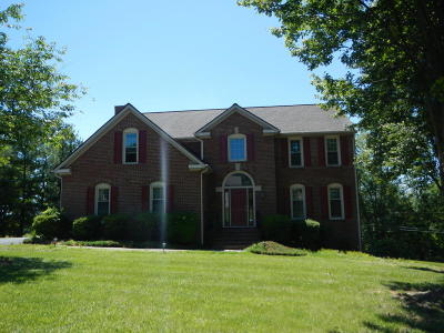Roanoke County Single Family Home For Sale: 7958 Hollins Court Dr