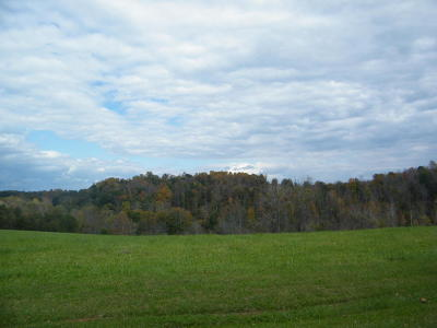 Glade Hill VA Residential Lots & Land For Sale: $59,000