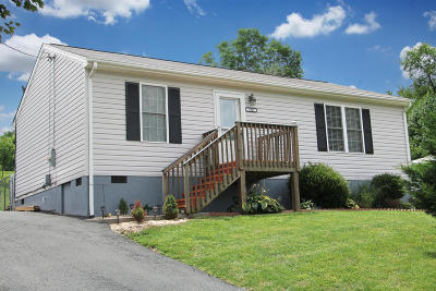 Roanoke Single Family Home For Sale: 1007 Liberty Rd