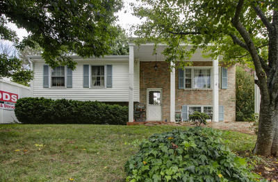 Roanoke County Single Family Home For Sale: 1821 Cranwell Dr