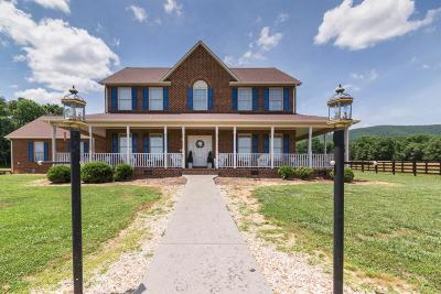 Botetourt County, Roanoke County Single Family Home For Sale: 1051 Lonesome Pine Dr