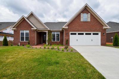 Salem Single Family Home For Sale: 479 Deer Run Cir