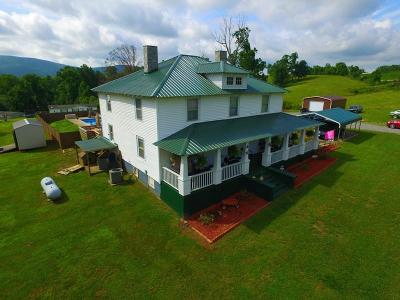 Franklin County Single Family Home For Sale: 5730 Virgil H Goode Hwy