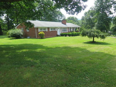 Botetourt County Single Family Home For Sale: 470 Blue Ridge Dr