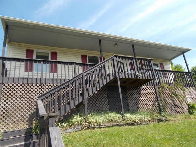 Roanoke County Single Family Home For Sale: 428 King St