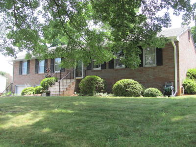 Roanoke County Single Family Home For Sale: 110 Barbara Ln