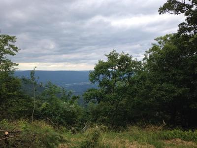 Salem Residential Lots & Land For Sale: 7617 Poor Mountain Rd