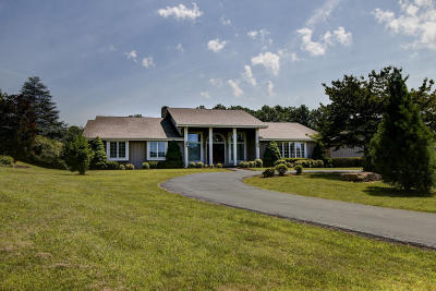 Botetourt County, Roanoke County Single Family Home Sold: 176 East Arrowhead Ct