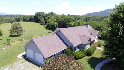 Bedford County Single Family Home For Sale: 3498 Charlemont Rd