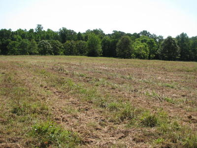 Pittsylvania County Residential Lots & Land For Sale: Wards Rd