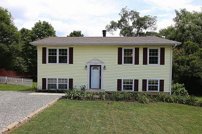 Single Family Home For Sale: 3912 Hyde Park Dr