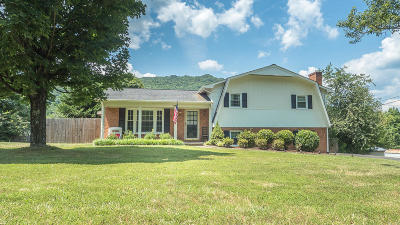 Daleville VA Single Family Home Closed: $191,500