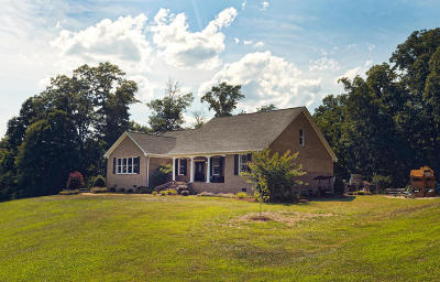 Botetourt County, Roanoke County Single Family Home For Sale: 312 Williams Farm Rd