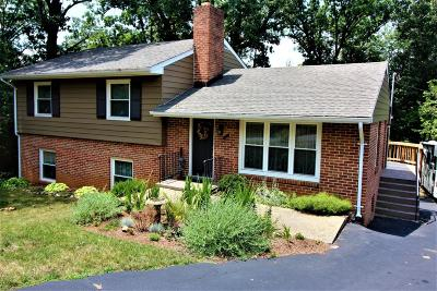 Roanoke Single Family Home For Sale: 2520 Round Top Rd NW