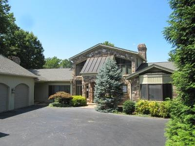 Franklin County Single Family Home For Sale: 85 Loving Cir