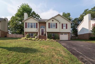 Roanoke County Single Family Home For Sale: 832 Harmon Cir