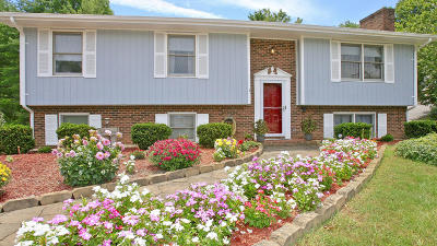 Roanoke County Single Family Home For Sale: 7203 Twin Forks Dr