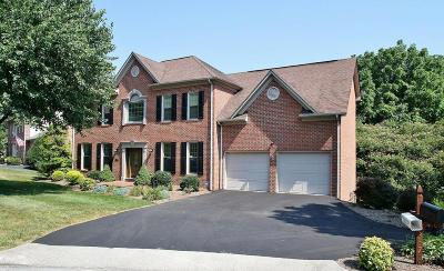 Roanoke County Single Family Home For Sale: 3573 Larson Ln SW