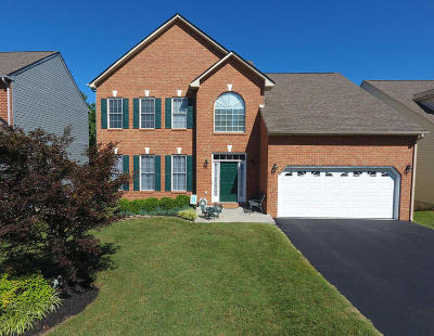 Roanoke County Single Family Home For Sale: 7526 New Barrens Ct