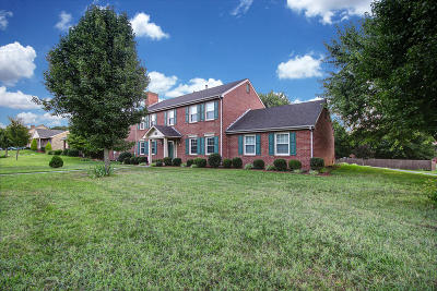 Roanoke County Single Family Home For Sale: 2045 Mountain View Rd