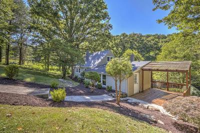 Botetourt County Single Family Home For Sale: 937 Little Catawba Creek Rd