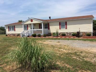 Bedford County Single Family Home For Sale: 6941 Moneta Rd