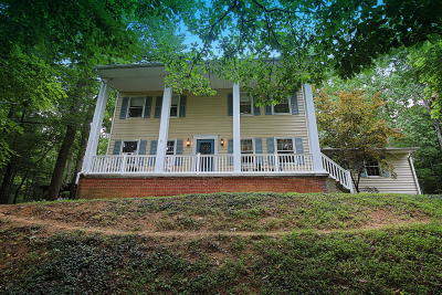 Roanoke Single Family Home For Sale: 6852 Mt Chestnut Rd