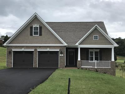 Botetourt County Single Family Home For Sale: Lot 1 Ashley Links Dr