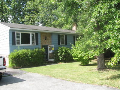 Roanoke County Single Family Home For Sale: 623 Two Tree Ln