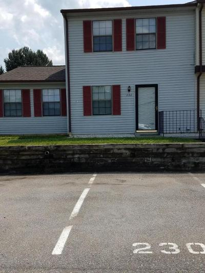 Botetourt County Attached For Sale: 230 Tinkerview Dr