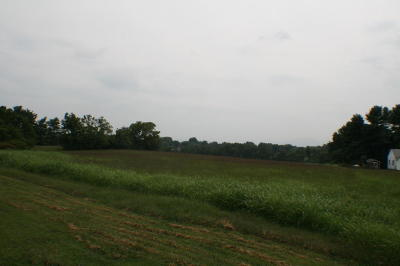 Roanoke Residential Lots & Land For Sale: Cove Rd