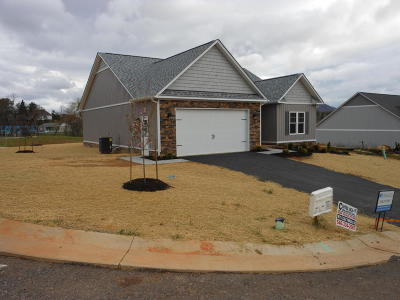 Roanoke County Single Family Home For Sale: Lot 16 Primrose Ct