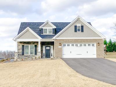 Botetourt County Single Family Home For Sale: Lot 11 Ashley Links Dr