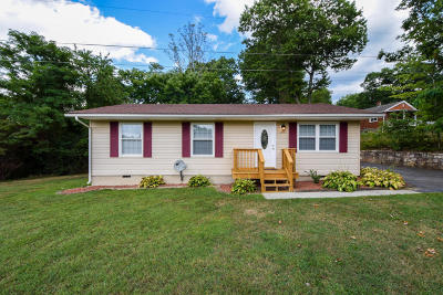 Roanoke VA Single Family Home For Sale: $116,880
