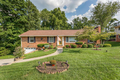 Roanoke County Single Family Home For Sale: 327 Boxley Rd