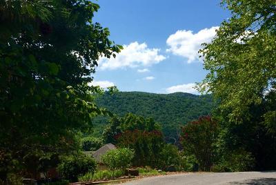 Roanoke Residential Lots & Land For Sale: 5316 Fox Den Rd