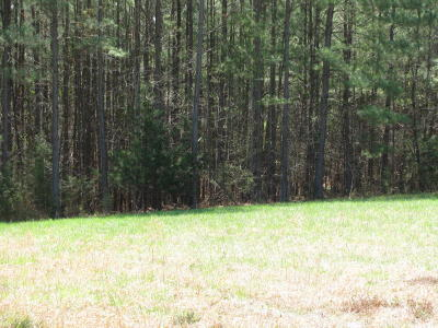 Pittsylvania County Residential Lots & Land For Sale: Brights Rd