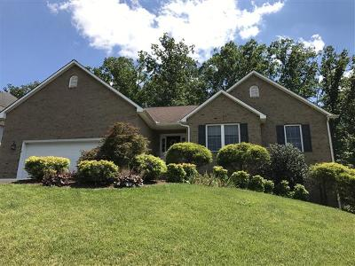 Roanoke County Single Family Home For Sale: 7917 Sequoia Dr
