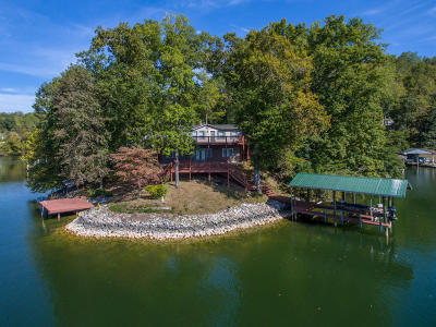 Goodview Single Family Home For Sale: 1166 Haygood Dr